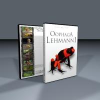 DVD Oophaga Lehmanni