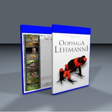 BluRay Oophaga Lehmanni